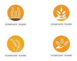conjunto de símbolos de círculo de trigo vetor
