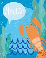 lagosta, algas, água, vida marinha