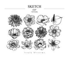 variedade de desenhos de flores desenhados à mão vetor