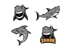 Vector livre Tubarão