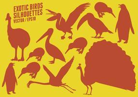 Silhuetas pássaros exóticos vetor
