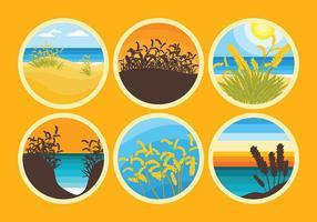 Vetor grátis de ícones de aveia do mar