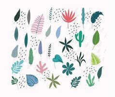 folhas e folhagens tropicais vetor