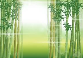 Cena de bambu na manhã vetor