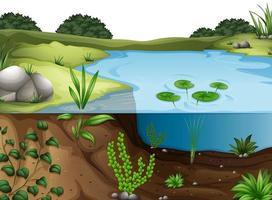 ambiente natural paisagem cena