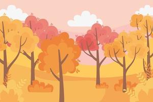 folhas, floresta, árvores da natureza do panorama do outono, cena do céu