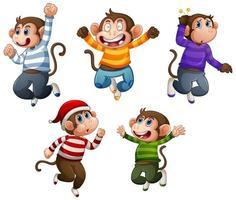 quatro macacos usam camiseta em salto sobre branco vetor