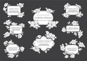Petunia Flores do vetor Moldura