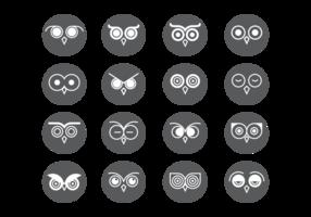 Coruja Olhos Icons Vector