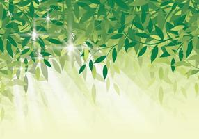 Background folha verde fresca vetor