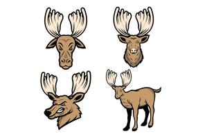 Free Vector Moose Mascote