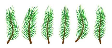 galhos de árvore de natal