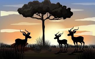 silhueta da cena da gazela na África vetor