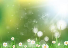 Fundo Bonito Dandelion vetor