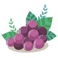 mirtilos frescos ou uvas com folhas verdes vetor