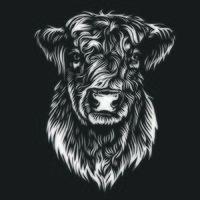 arte em linha de vaca galloway gado vetor