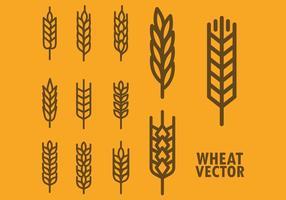 Livre de trigo ícones do vetor