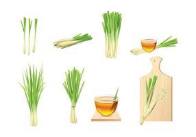 Lemongrass Elements Vector