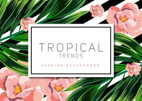 Fundo Tropical Vector