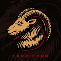 signo do zodíaco Capricórnio