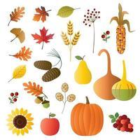 conjunto de frutas, vegetais e folhagens de outono vetor