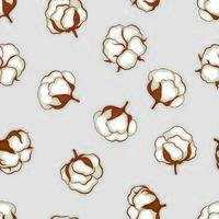 Padrão sem emenda floral de planta bola de algodão
