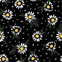 padrão abstrato com flores de camomila