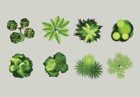 vista aérea de plantas com fundo cinzento vetor