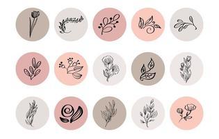 pastel destaque coleção de ícones de ervas botânicas vetor