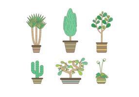 Livre Evergreen Planta de casa Vectors