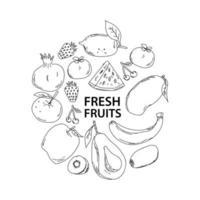 rabiscos de frutas frescas desenhados à mão
