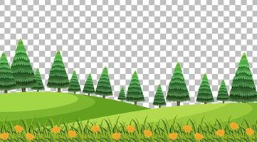 cena de parque natural com flores e paisagem de campo