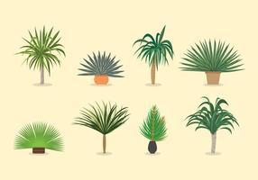 Yucca vetores de plantas