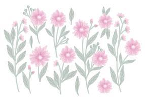 Composições floral desenhado mão do vetor
