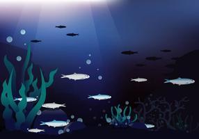 Profundo fundo Sardinhas Mar Vector