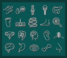 conjunto de ícones de saúde e anatomia do corpo humano vetor