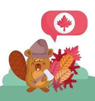 castor canadense para a celebração do dia do Canadá vetor