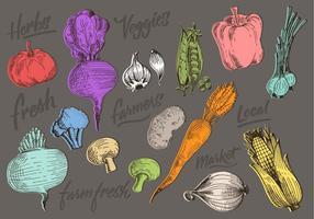 Vegetais de cor Doodles vetor