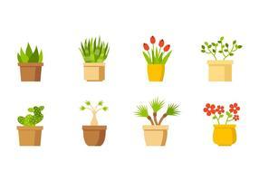 Vector livre Casa coleção de plantas