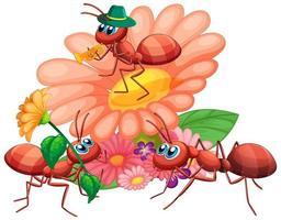 grupo de formigas e flores vetor