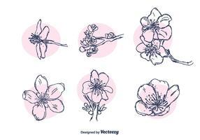 Flor de Pessegueiro Vector Set