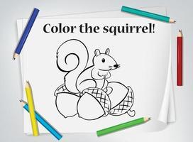 planilha de colorir esquilo infantil vetor