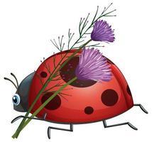joaninha com flor roxa vetor