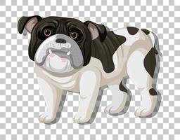 desenho animado de bulldog preto e branco em pé vetor