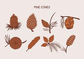 Brown Pine Cones Ilustração vetor