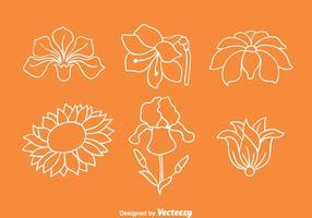 Flores Coleção vetores de linha