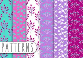 Set padrão decorativo vetor