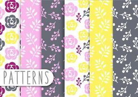 Floral padrão decorativo Vector Set