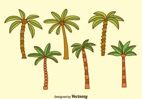 Palmeira Coleção Vectors