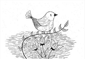 Mão, desenhado, vetorial, pássaro, Ilustração vetor